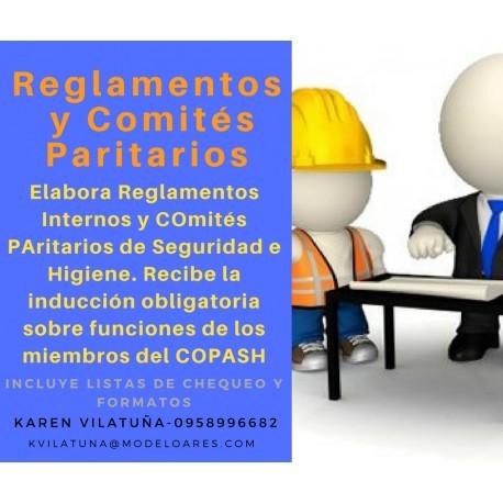 PRESENCIAL - Reglamentos internos de seguridad e higiene – comités paritarios