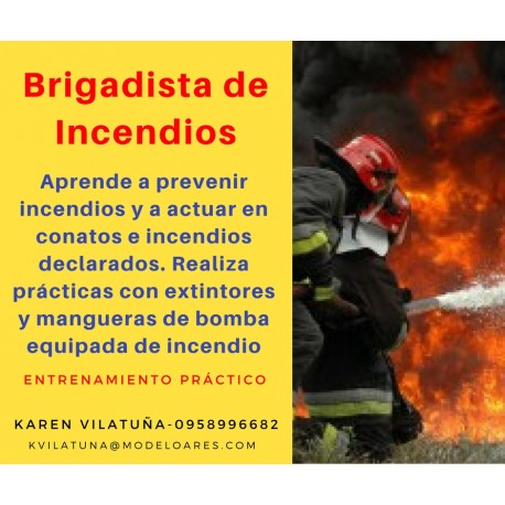 PRESENCIAL - Brigadista contra incendios