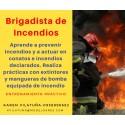WEBINAR - Brigadista contra incendios