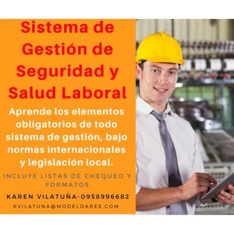 WEBINAR - Sistema de gestión de seguridad y salud laboral
