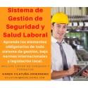 PRESENCIAL - Sistema de gestión de seguridad y salud laboral